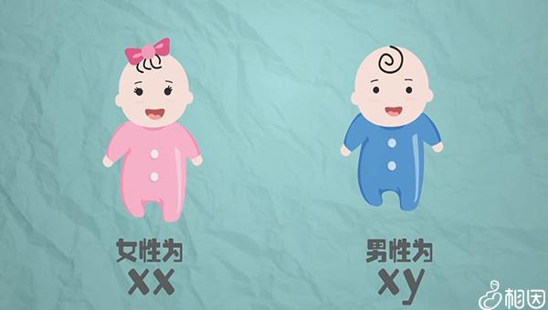 孕期内裤发黄看胎儿性别