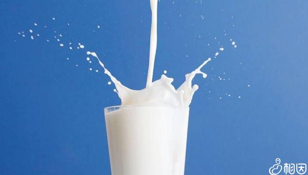 牛奶和奶粉的营养价值都很高