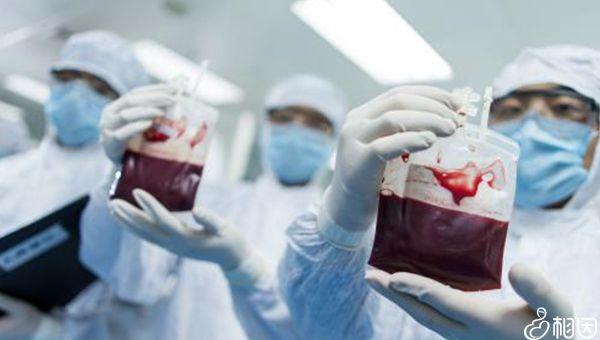 干细胞能修复受损器官