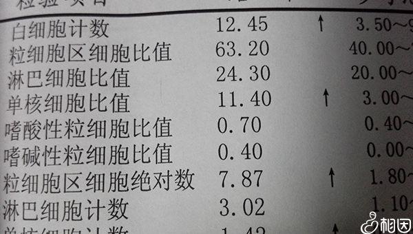 血常检查报告单