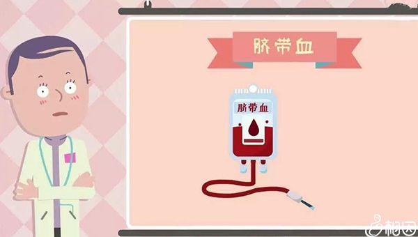 脐血干细胞可治疗血液疾病