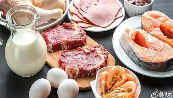 NK细胞偏低可多摄入高蛋白食物