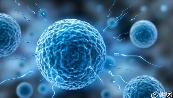 洗精术能够去除HIV病毒