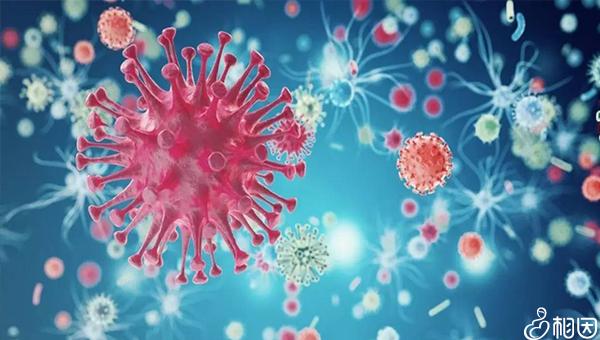 男性hiv患者精子中不含病毒