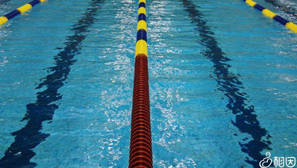 游泳也是锻炼方法之一