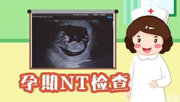 大龄孕妇要做NT检查