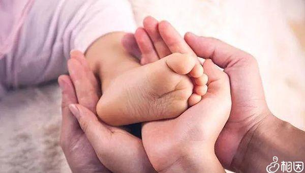 试管婴儿和正常受孕宝宝一样健康