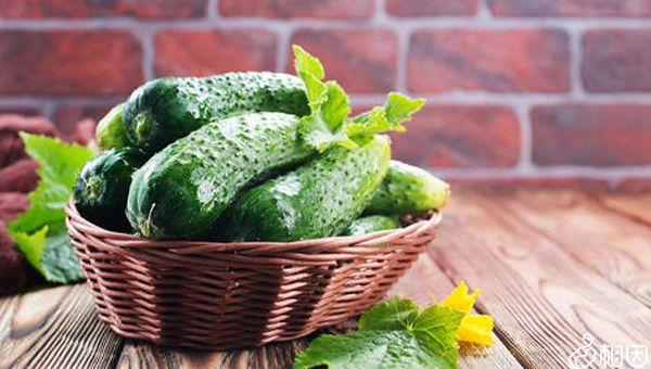 黄瓜含纤维素有助卵巢恢复