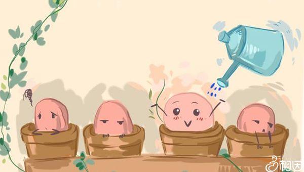 卵子质量好胚胎等级才高