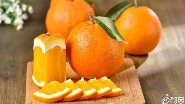 吃橙子能提高着床成功率