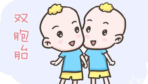 双胞胎会加重耻骨的负担