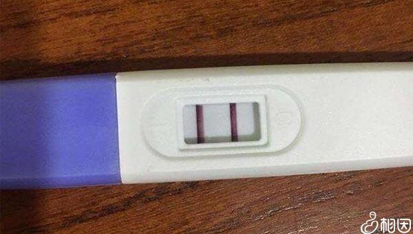 验孕棒两条杠说明怀孕