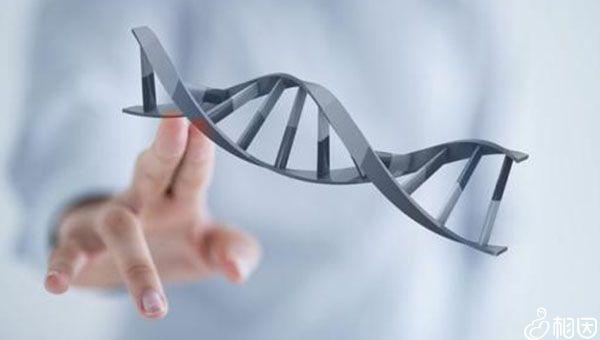 甲亢跟遗传有关
