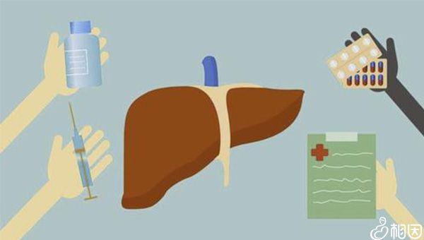 肝脏有问题要及时检查