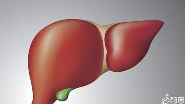 肝功正常并不表示肝脏没问题
