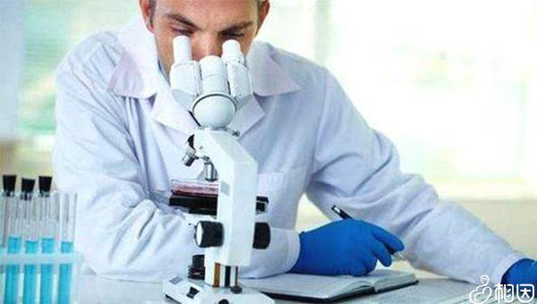 肝功能检查可以选择挂感染科