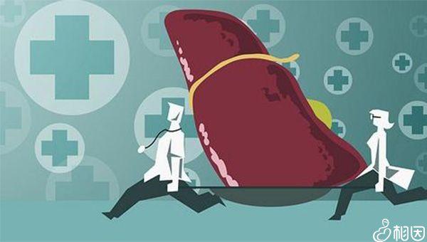 切除部分肝脏后指标仍然正常