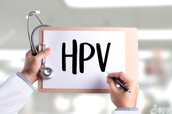 hpv检查过程
