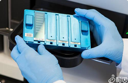 染色体检查项目有哪些