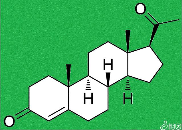 黄体酮又称孕酮激素与黄体激素