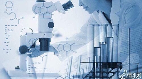 试管抗结剂方案是什么