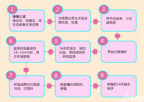试管婴儿流程图