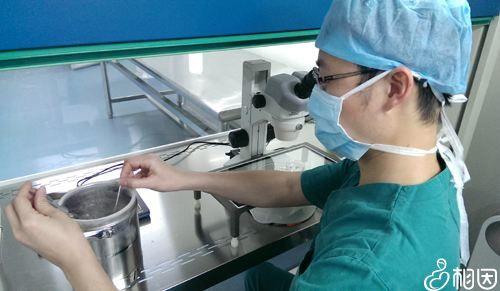 冷冻胚胎移植时间
