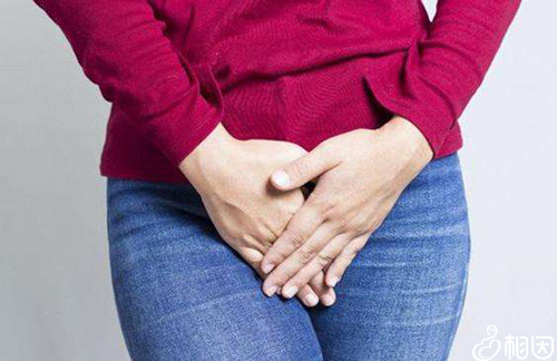 胚胎移植前怎么憋尿