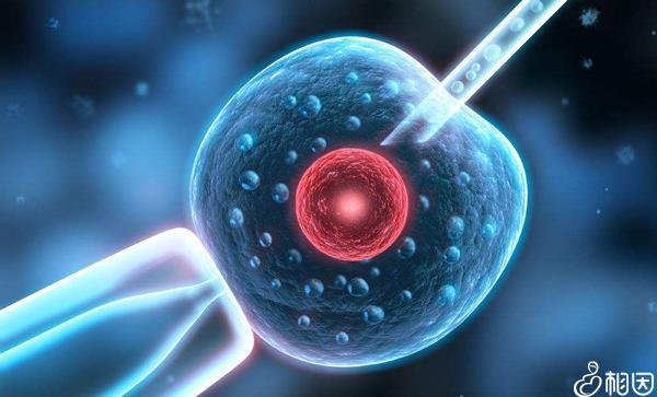 长方案促排期间不会影响子宫内膜