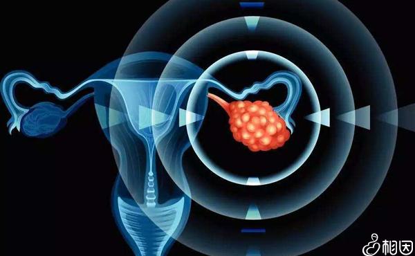 卵巢功能稍好的女性才能够选择长方案