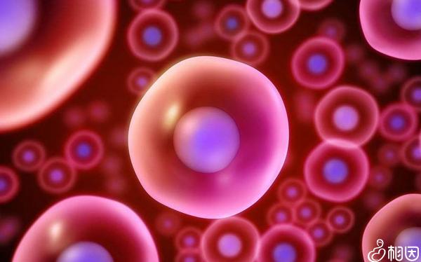 一般在预计14天的时候开始见卵泡监测