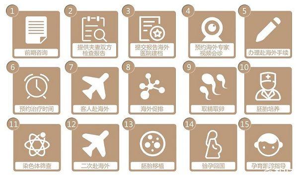 海外试管婴儿流程
