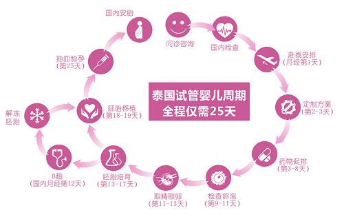 泰国iBaby试管婴儿流程