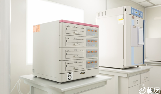 胚胎实验室