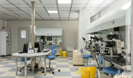实验室和胚胎学