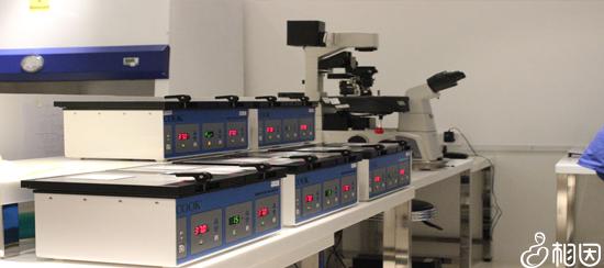 胚胎检测仪器
