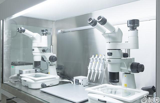 胚胎处理仪器
