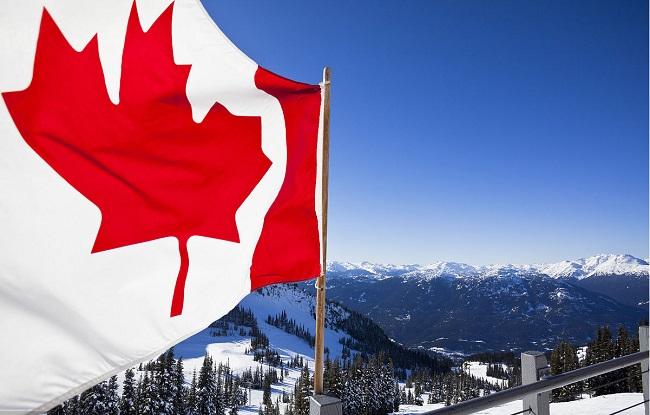 加拿大试管婴儿