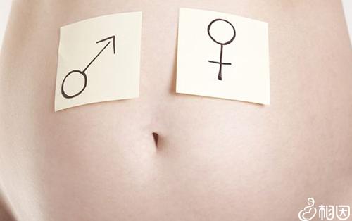 胎盘后壁不能确定生男生女