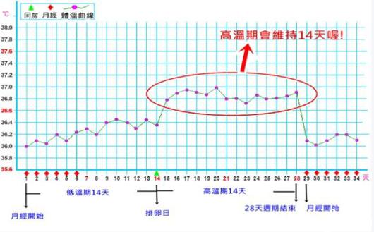 基础体温监测表