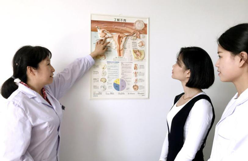 讲解胚胎移植的过程