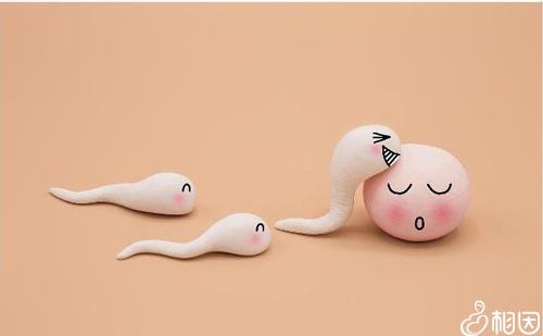 冻胚移植前注意些什么