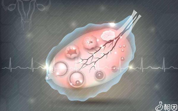 夜针注射后可以抑制卵泡早排