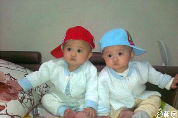 龙凤胎和双胞胎有很大的区别