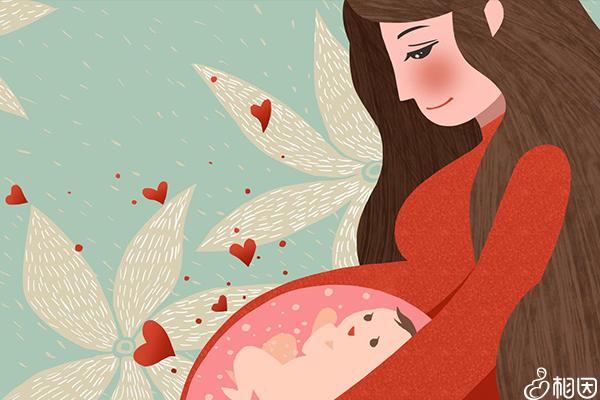 妈妈看着肚子里的胎儿