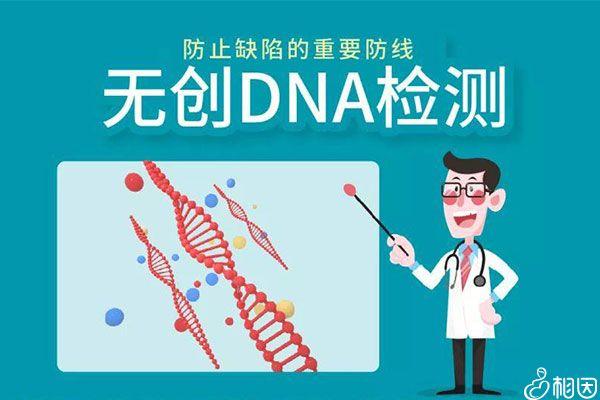 无创DNA是重要的排畸手段