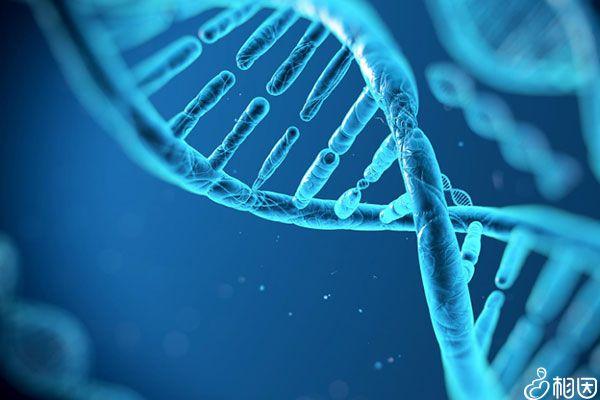 无创DNA和亲子鉴定原理类似