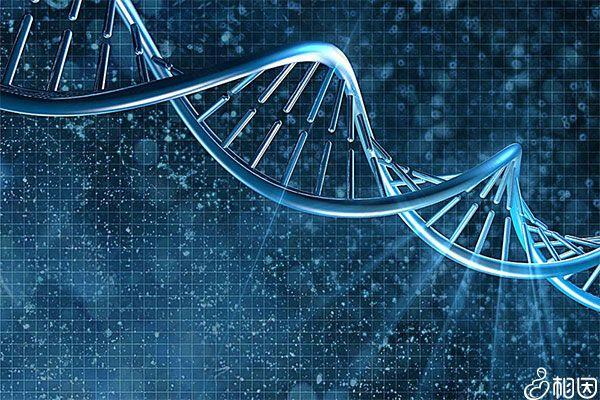 无创DNA失败后可领取赔偿