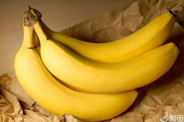香蕉含糖量很高