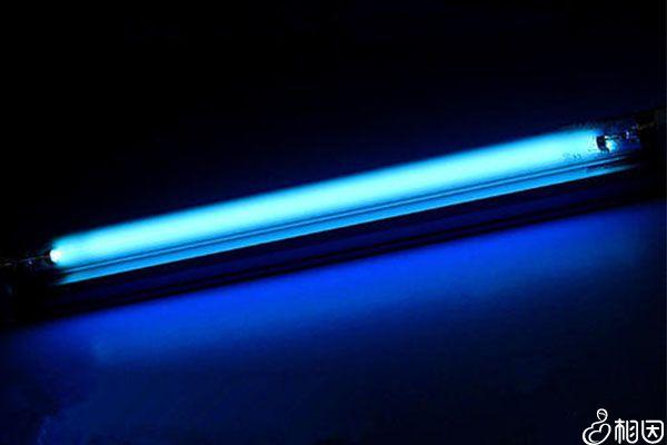 LED灯珠使用效果更好